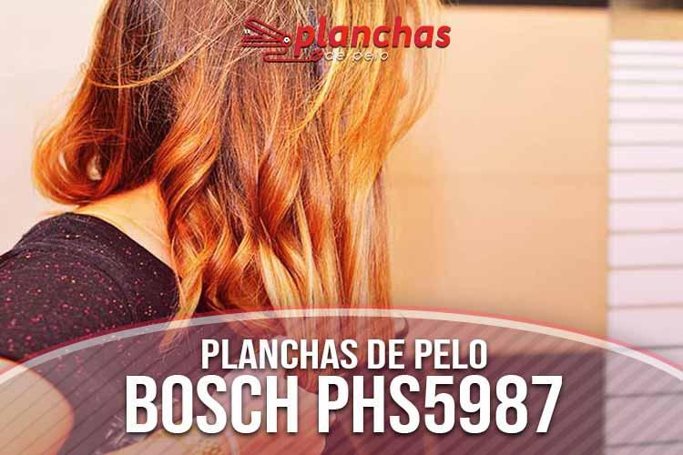 opinion-bosch-phs5987
